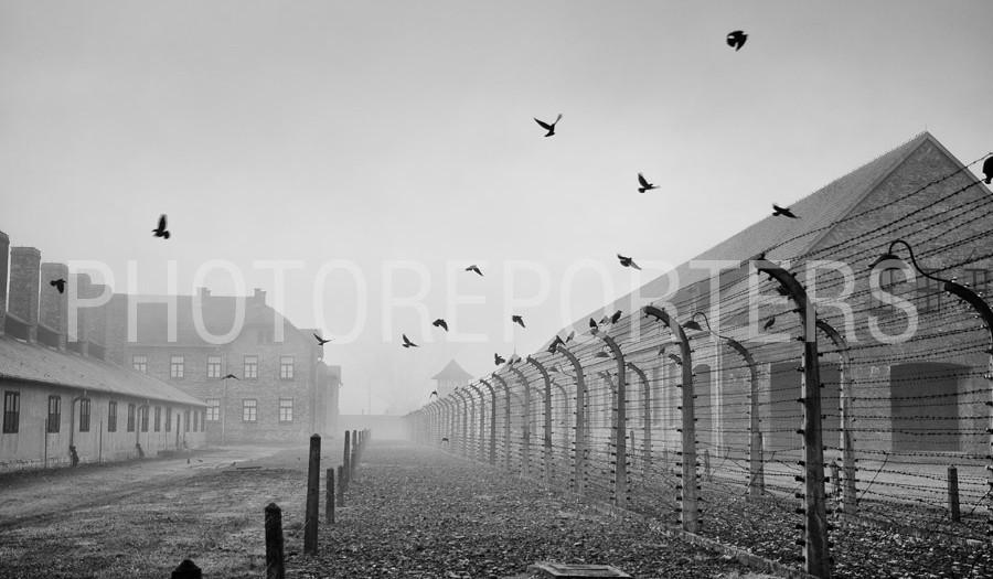 Auschwitz - La Verità Rende Liberi
